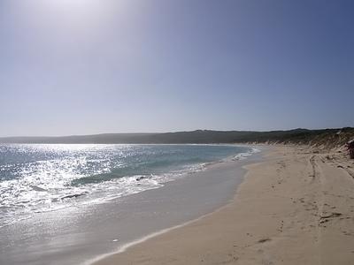 2012 5 Hamelin Bay.jpg